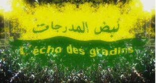 نبض المدرجات l'Echo des Gradins